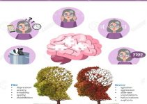 What Is The Alzheimer's Disease