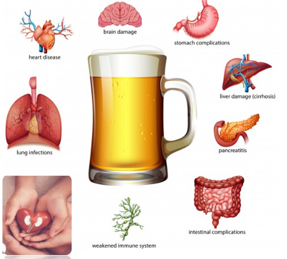 Photo of Effects Of Alcohol On The Body