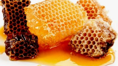 The Benefits Of Honey Bees
