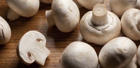 Eating Mushrooms Can Prevent Breast Cancer