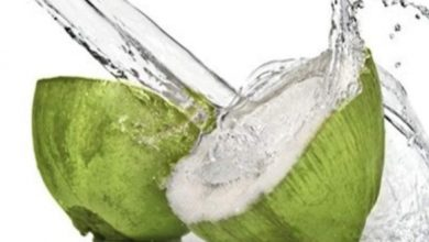Photo of Benefits Of Coconut Water For Pregnant Woman