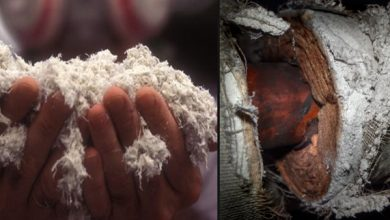Photo of How To Test For Asbestosis